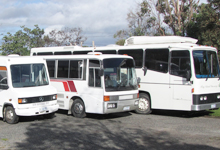 King Island Discovery Tour Buses